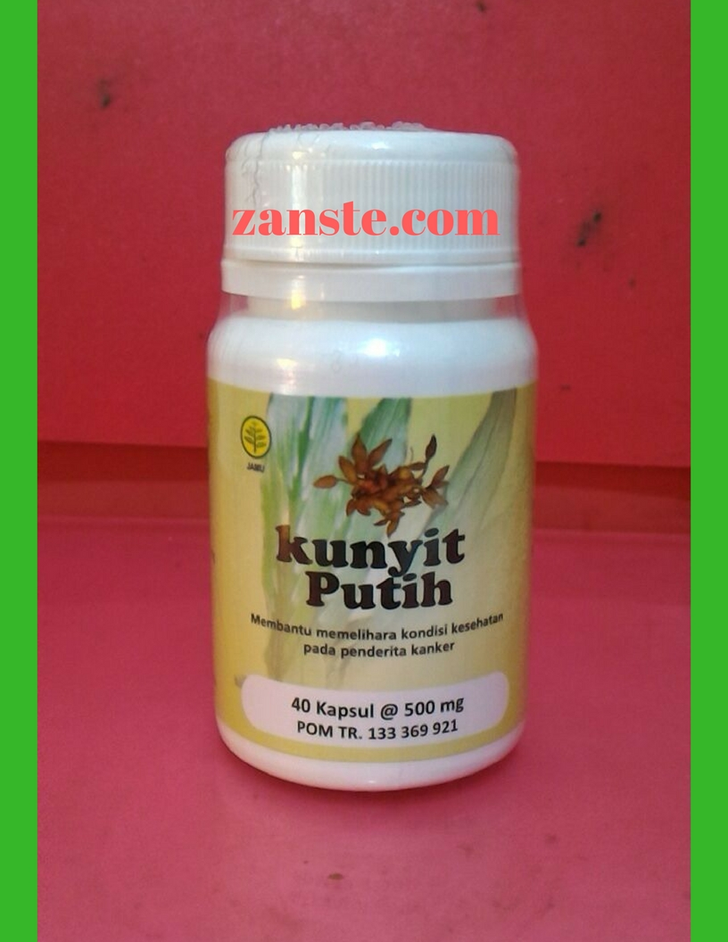 Jual Herbal Kunyit Putih Herbal Insani Surabaya